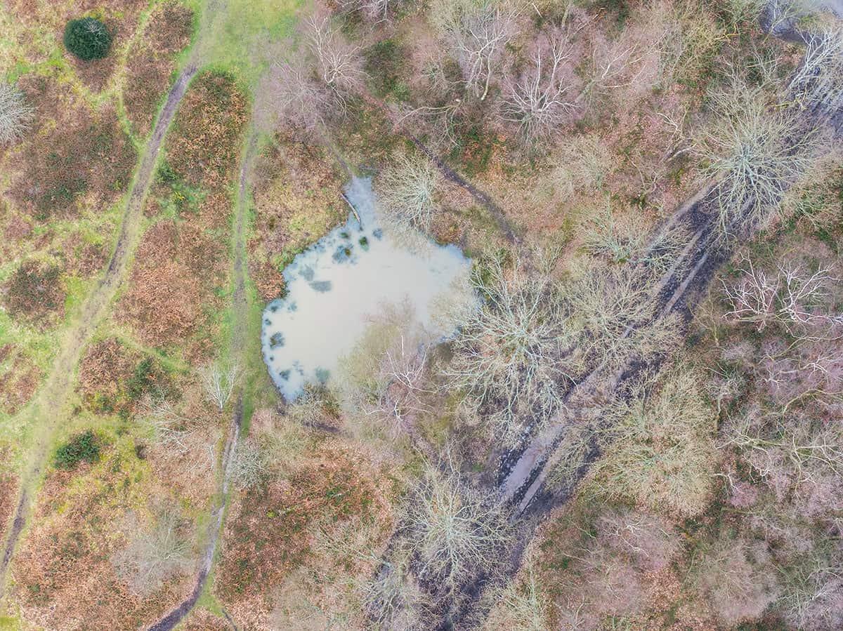headley heath drone footage - ponds